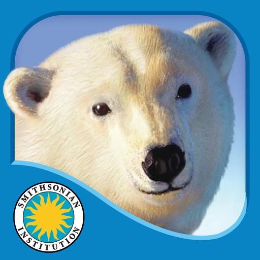 Polar Bear Horizon - Smithsonian Oceanic Collection