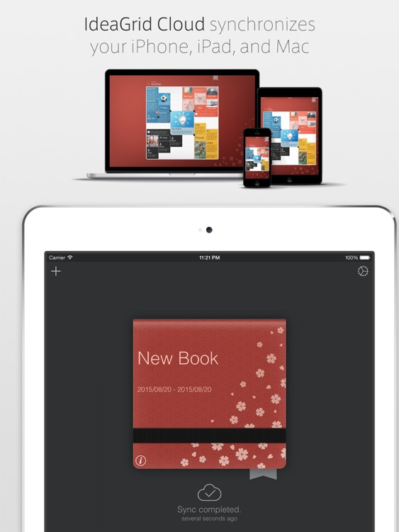 IdeaGrid for iPad screenshot-3