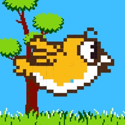 A Bird Hunt - Retro Bird Hunting Game