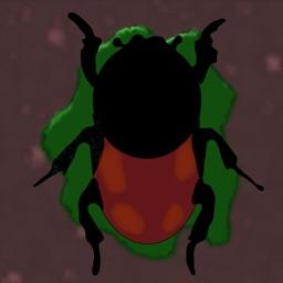 Smash The Beetles
