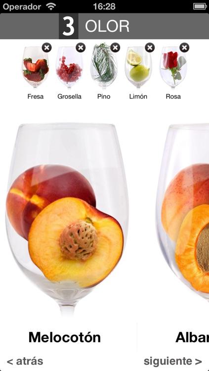 Wine Taste Experience