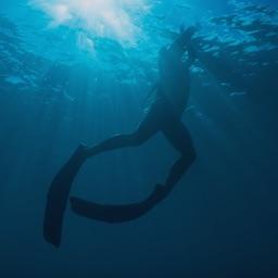 Apnea Diver