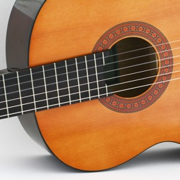 Discover Musical Instruments