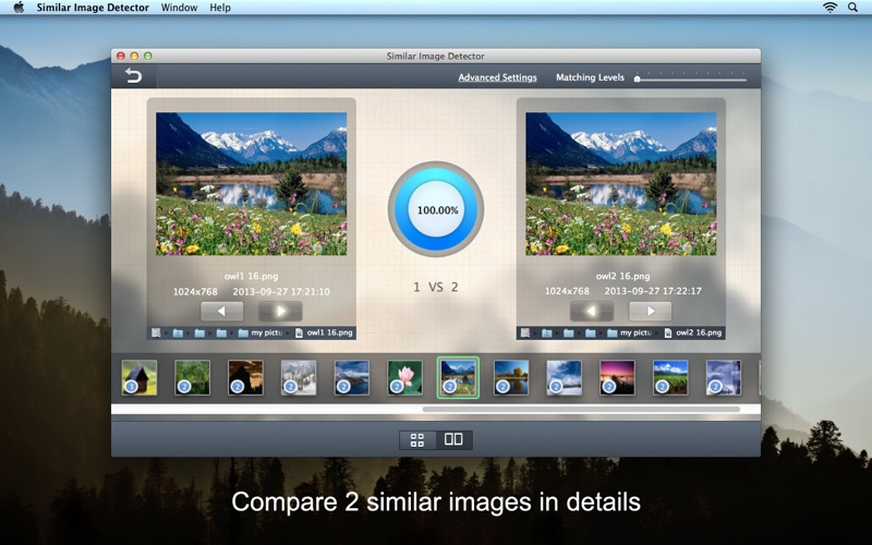 Similar Image Detector Screenshots
