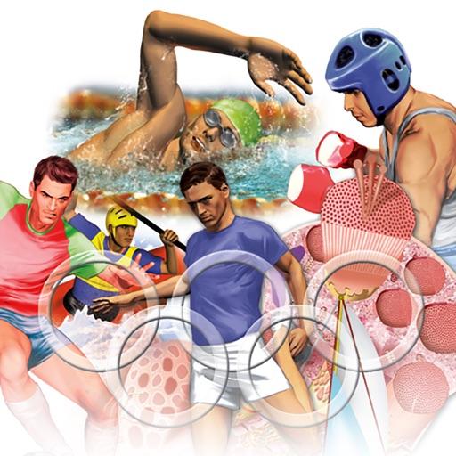 Miniatlas Sports Injuries