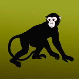 The World's Primates