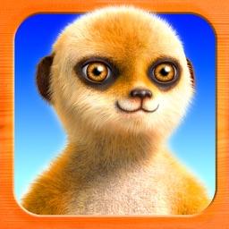 Hello Meerkat! HD