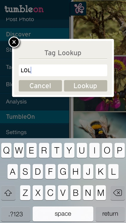 TumbleOn - Photo viewer for Tumblr images. screenshot-3