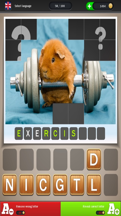 Animals Can Also - Reveal the picture, guess the word and solve the quiz