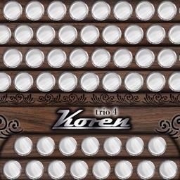 Koren trio4 - live trio band on accordion