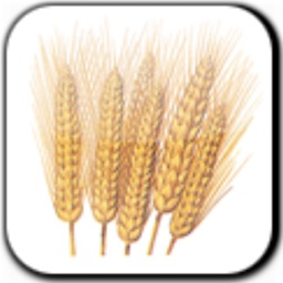 GreatApp - for Wheat Belly Diet Edition:Lose the Wheat,Lose the Weight,Back to Health+
