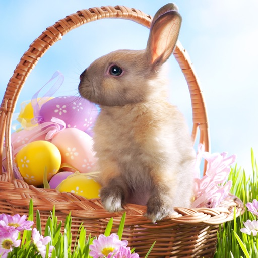 Spring & Easter Wallpapers - Cute Backgrounds for Your Phone