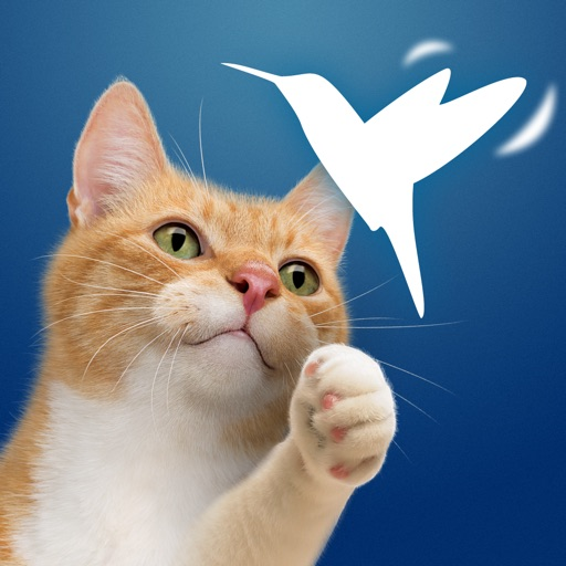 Friskies® Happy Wings (EU)