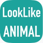AnimalCam : Camera app that tell you what animal that look like you! icon