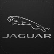 Jaguar Mileage Tracker