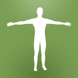 Biology – The Human Body