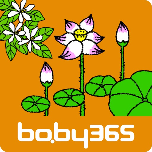 baby365-Blossom icon