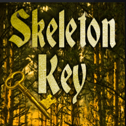 Skeleton keys. Find your keys to unlock treasure