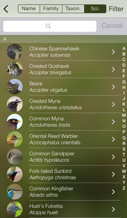 HKcBirds: Common Birds of Hong Kong