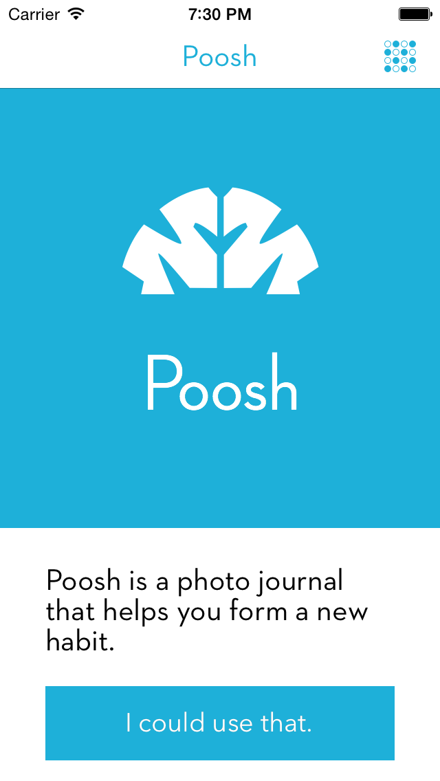 Poosh - a selfie journal for one fitness habit