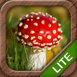 Mushrooms LITE - NATURE MOBILE - For Safe Enjoyment!