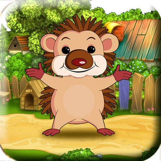Bouncing Hedgehog! - Help The Launch Tiny Baby Hedgehog To Catch His Food! iOS App