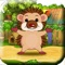 Bouncing Hedgehog! - Help The Launch Tiny Baby Hedgehog To Catch His Food!