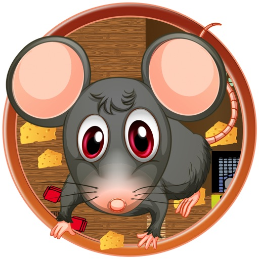 Tap A Rat Super Awesome Smashing Challenge FREE iOS App