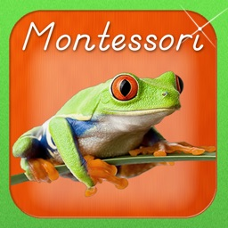 Montessori Approach to Zoology - The Animal Kingdom (Vertebrates)