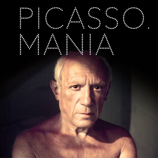 Picasso.mania, L'Application officielle de l'exposition