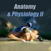 Anatomy & Physiology II - Bold Type Media LLC