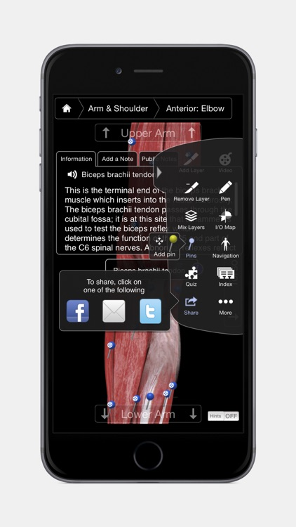 Muscle System Pro III - iPhone Edition screenshot-4