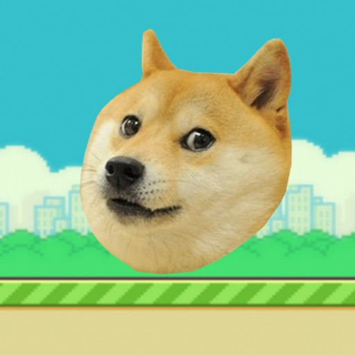 Doge Ball icon