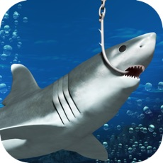 Activities of Shark On! Extreme Maze Game for the Monster Fisherman