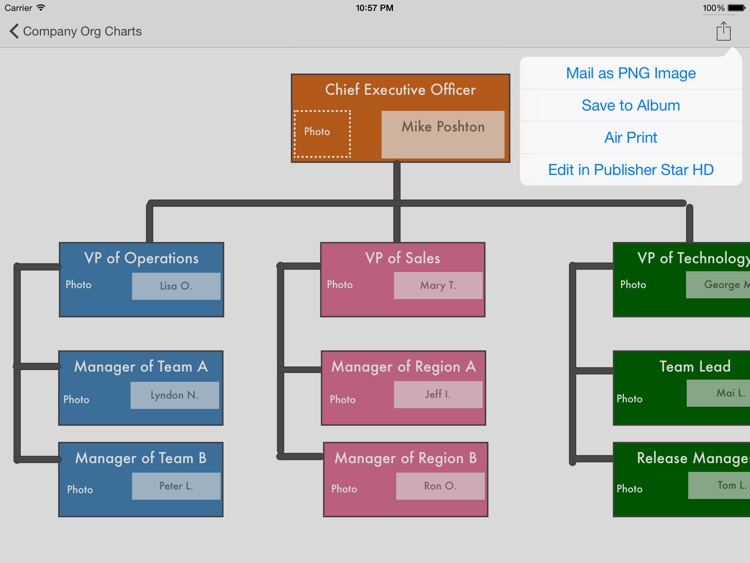 Company Org Charts - Templates for Publisher Star HD