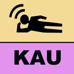 LeaningTraveler Kauai