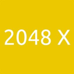 2048 X