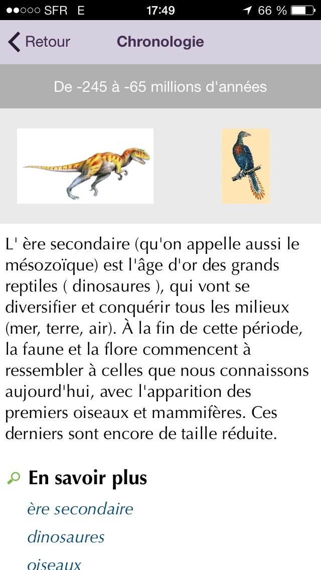 Dictionnaire Junior L... screenshot1