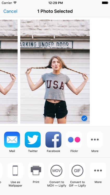 Ligify — Export GIF or MOV, for use with Live Photo