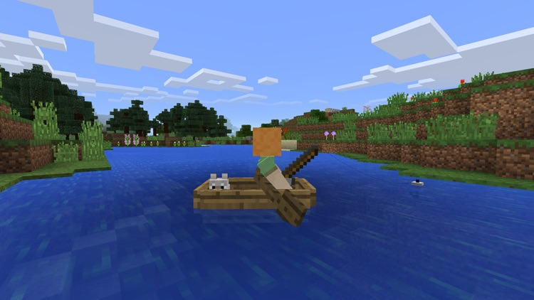 Minecraft screenshot-4