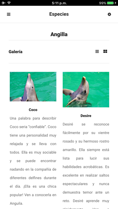 Dolphin Discovery App 4
