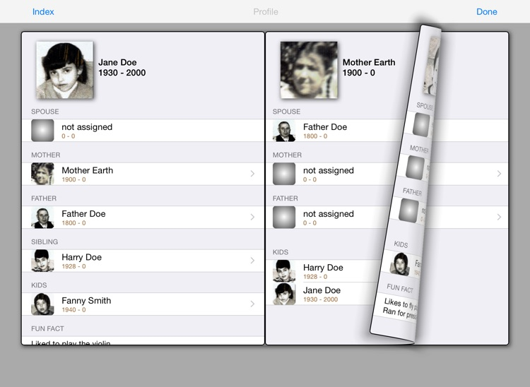 Build Your Family Tree HD screenshot-3