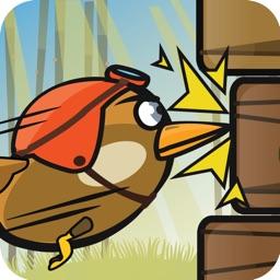WoodPecker : Bird Dash