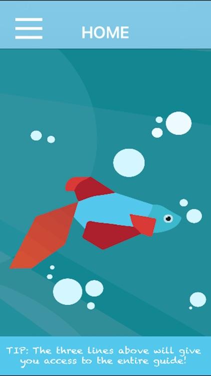 Betta Fish Guide
