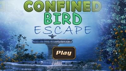 Confined Bird Escape-0
