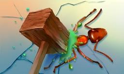 Ant Smasher - FREE