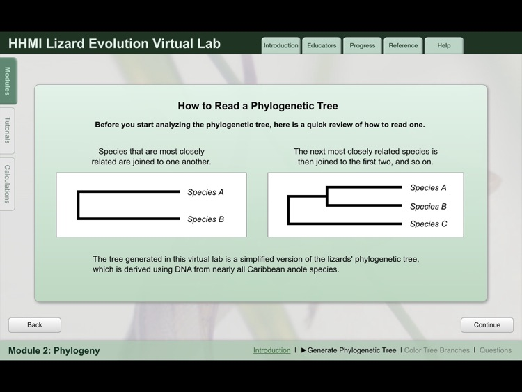 Lizard Evolution Virtual Lab screenshot-3