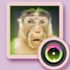 2016猴年新春全民幽默换脸自拍相机 — 天天酷炫的趣味变脸美妆开运神器