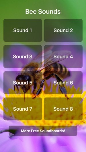 Bee Sounds! on the App Store