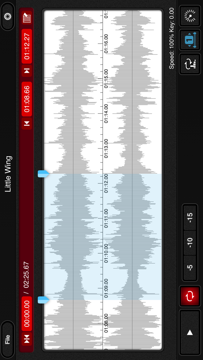 mimiCopy - Slow Down & Pitch Shift Player Screenshot